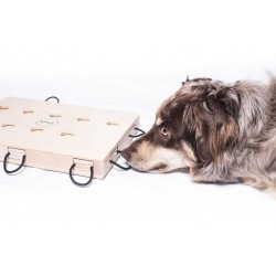 Hunde GLÜCKSRAD