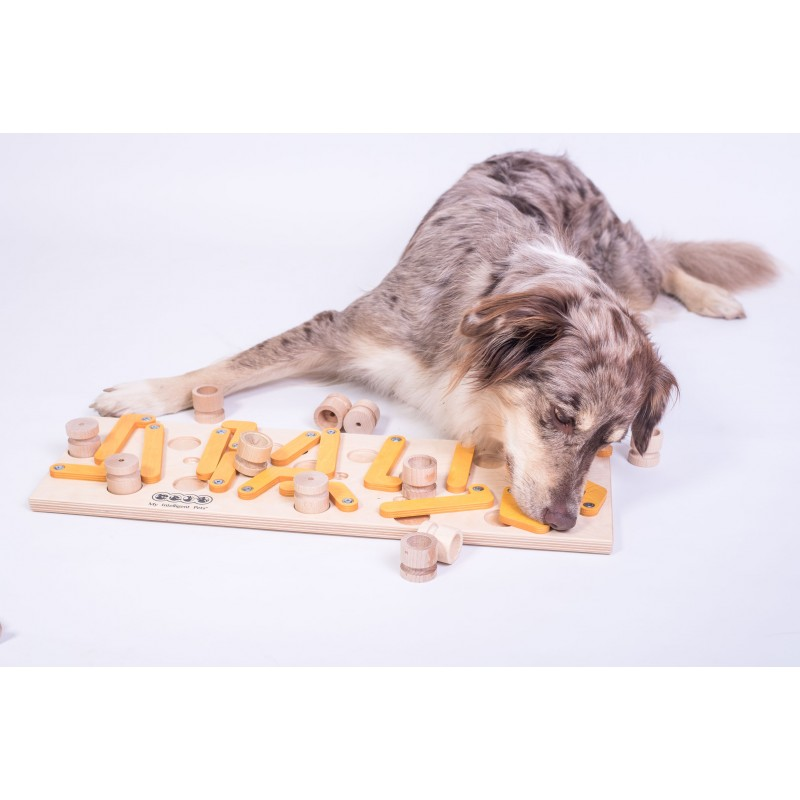 Dog' SUDOKU® Medium Orange - Profi